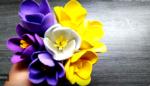 Como hacer con tus propias manos flores de goma eva